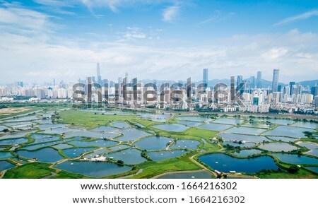 marin · Hong-Kong · eau · résumé · paysage · été - photo stock © kawing921