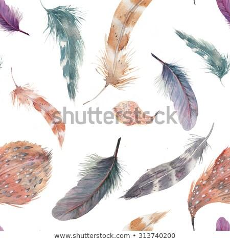Bird plumes textile background Stock photo © ABBPhoto