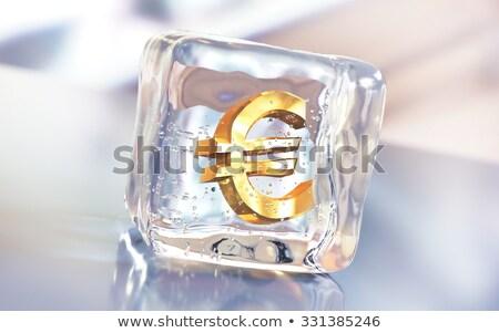 евро · символ · заморожены · внутри · Ice · Cube - Сток-фото © erickn
