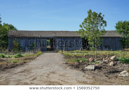 old shed Stock photo © jayfish