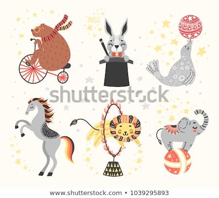 desen · animat · drăguţ · amuzant · elefant · vector · eps - imagine de stoc © netkov1
