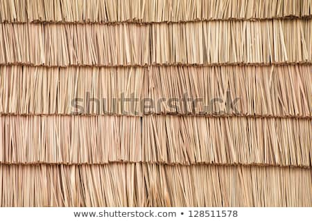 thatched roof detail stock photo © thp