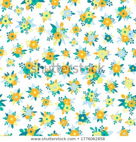 Abstract floreale vintage pattern può Foto d'archivio © cosveta