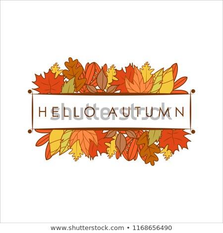 Hello Autumn Stacked Leaves Foliage Greeting Frame Illustration Design Stock photo © svvell