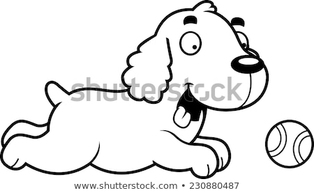 Cartoon Cocker Spaniel Chasing Ball Stock photo © cthoman