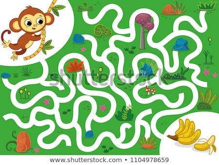 macacos · ilustração · muitos · flor · natureza · grupo - foto stock © colematt