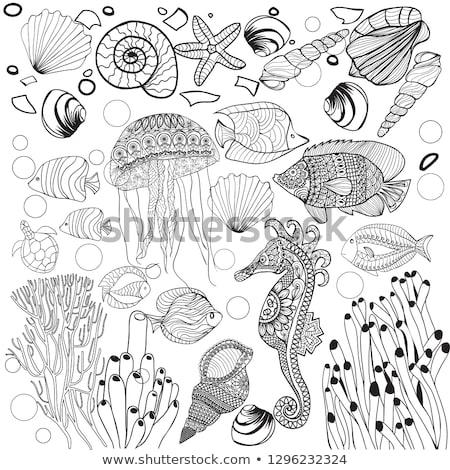 Decorativo subaquático mundo mar vida Foto stock © Margolana