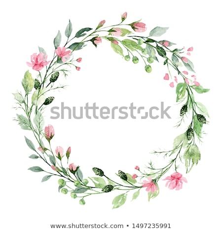 szett · vízfesték · virágmintás · koszorú · fehér · keret - stock fotó © bonnie_cocos