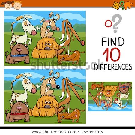 Diferenças tarefa cômico cães desenho animado Foto stock © izakowski