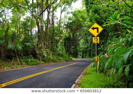 шоссе знак зеленый облаке улице знак путешествия Сток-фото © kbuntu
