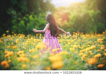 girl in yellow field Stock photo © carlodapino