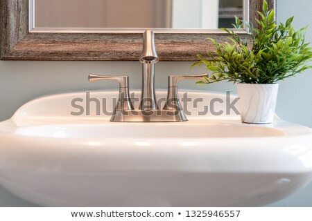 brushed nickel faucet Stock photo © ArenaCreative