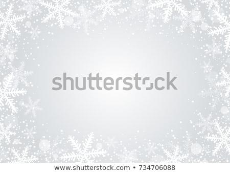 25 vektor hópelyhek elmosódott tél tájkép Stock fotó © m_pavlov