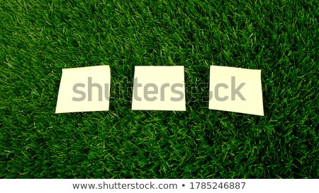 rajz · izolált · fehér · iroda · háttér · zöld - stock fotó © cherezoff