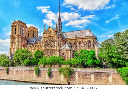 красивой мнение Собор Нотр-Дам Париж Франция Сток-фото © ilolab