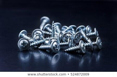 fém · fehér · csavar · acél · szerszám · körmök - stock fotó © digitalr