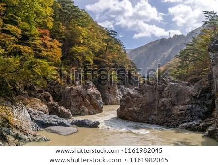 Kanyon Japán park kikapcsolódás égbolt erdő Stock fotó © vichie81