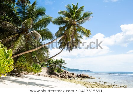 Scenic View Of Anse Baleine Beach, Mahe Island, Seychelles Stock photo © AndreyPopov