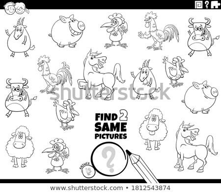 find two same sheep characters coloring book Stock photo © izakowski