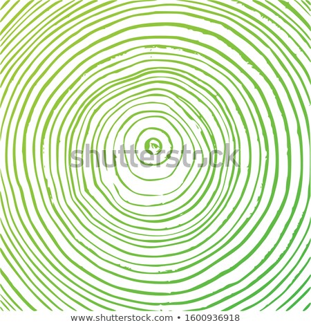 Tree rings background, cut tree trunk, wooden texture, lumber green concept. Vector graphics. Stock photo © kyryloff