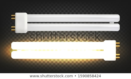 Lighting Lamp With Two Fluorescent Tubes Vector Stock photo © pikepicture