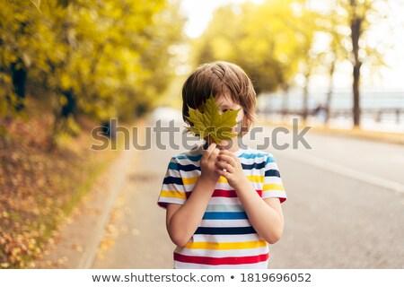 Portrait of a preschool boy playing near a tree with yellow leaves Stock photo © ElenaBatkova