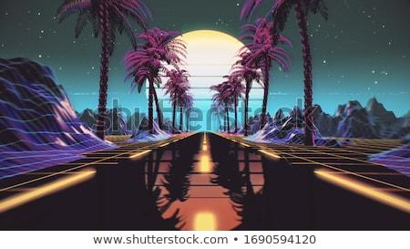 Retro futurista paisagem 1980 estilo digital Foto stock © tashatuvango