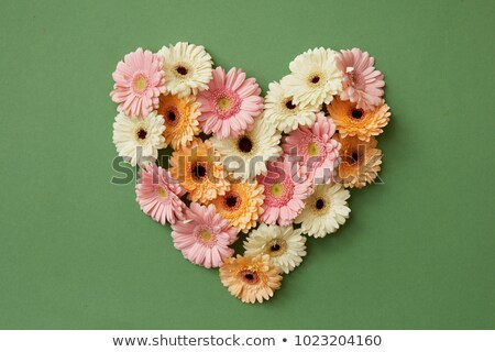 spring floral heart made from flowers stock photo © orson