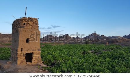 città · vecchia · tramonto · Yemen · tradizionale · architettura - foto d'archivio © travelphotography