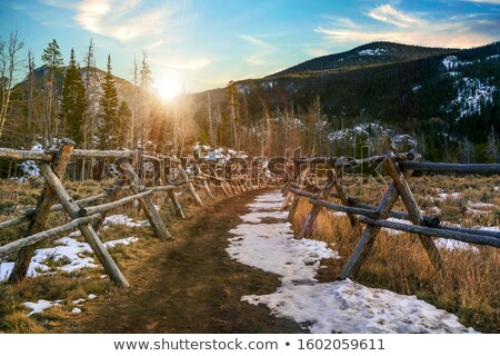 út · hegyek · Colorado · USA · erdő · kék - stock fotó © benkrut