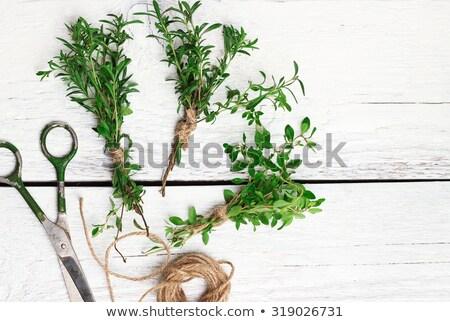 sebze · natürmort · ahşap · bo · ahşap · yaprak - stok fotoğraf © dashapetrenko