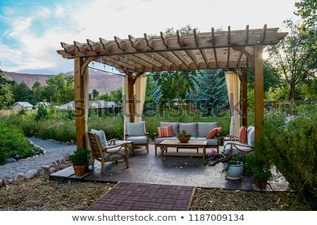 английский · саду · природы · Palm · тропические - Сток-фото © -talex-
