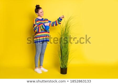rainbow brunette in water with flowers stock photo © dolgachov
