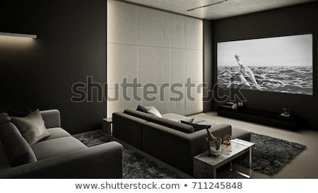 otthon · színház · kéz · technológia · doboz · szoba - stock fotó © ozaiachin