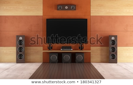 A contemporary home theater room without furniture Stock photo © ozaiachin