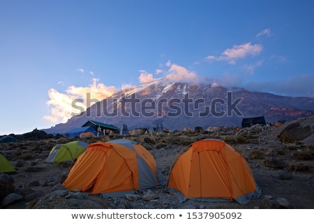 Kilimanjaro at Sunrise stock photo © ajn
