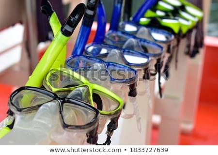 Snorkeling narzędzi Karaibów plaży wody morza Zdjęcia stock © FER737NG