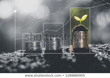 verde · gráfico · lucro · crescimento · realização - foto stock © stuartmiles