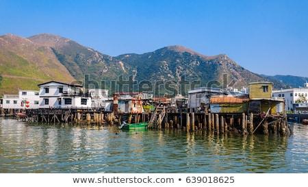 Halászat falu Hongkong ház fa hal Stock fotó © kawing921
