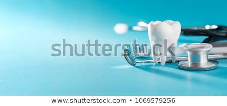 dente · cavidade · símbolo · lupa - foto stock © lightsource