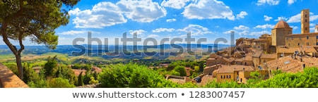 view on city of volterra tuscany stock photo © bertl123