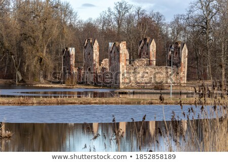 Ruins of stable Stock photo © timbrk