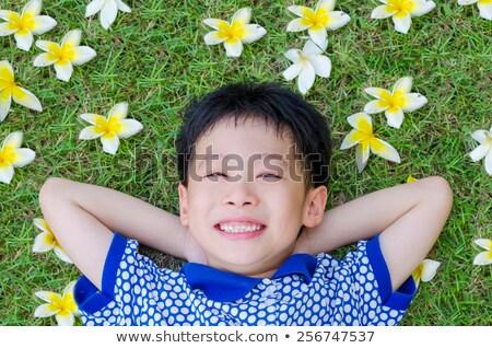 gelukkig · weinig · jongen · mooie · groene · Geel - stockfoto © vlad_star