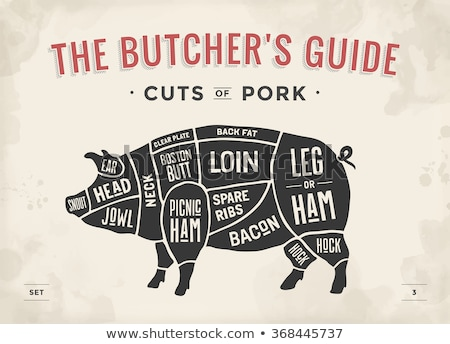 Pork cuts Stock photo © sifis