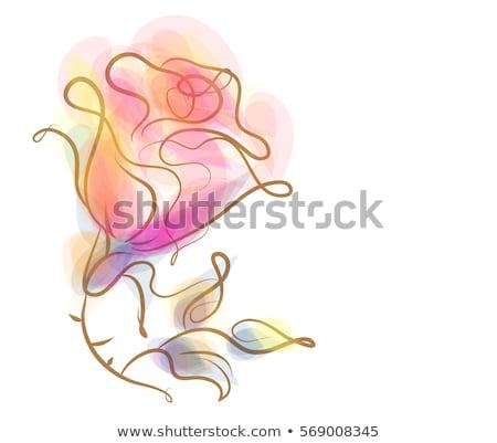 Elegante curva pétalas de rosa belo nu mulher jovem Foto stock © ChilliProductions
