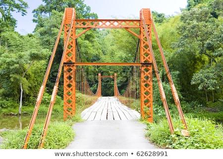 Puente colgante puente viaje edificios río arquitectura Foto stock © phbcz