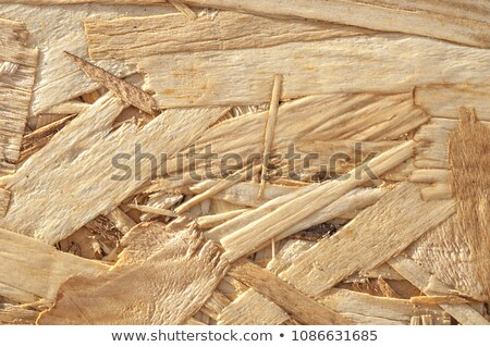 Fibreboard Texture Stock photo © THP