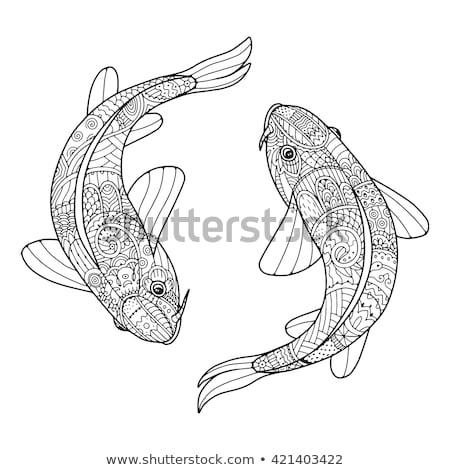 2 ニシキゴイ 水 周りに クール ストックフォト © oblachko