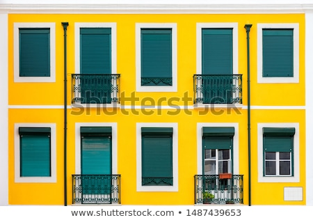 Typical historic building in Lisbon Stock photo © elxeneize