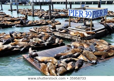 oude · boot · verweerde · gebruikt · dok · water - stockfoto © rghenry